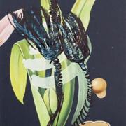 """o.T. (No. 8 aus der Serie """"Petrichor""""), 2017"""